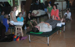 Angel teaching FI at an advanced  Feldenkrais training